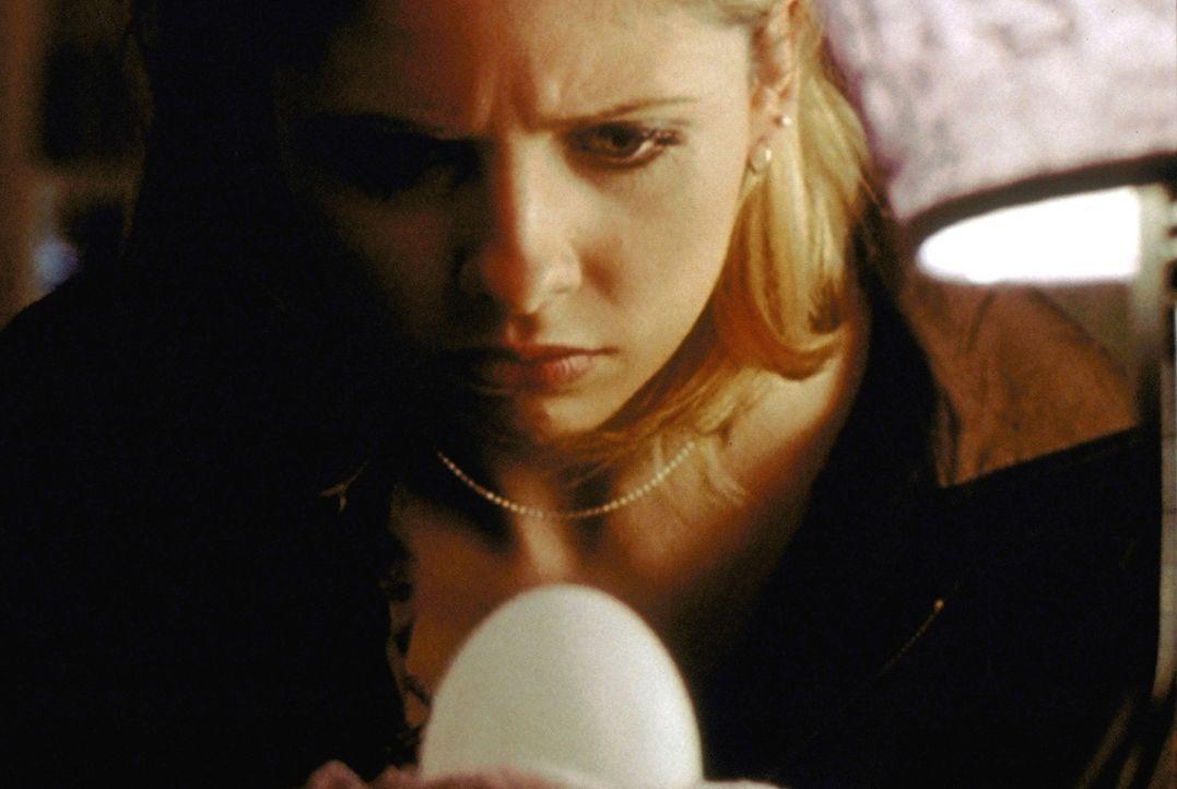 Buffy (Sarah Michelle Gellar) beobachtet misstrauisch, welche Veränderungen mit dem Ei auf ihrem Nachttisch vor sich gehen. Sie ahnt nichts Gutes. - Bildquelle: TM +   2000 Twentieth Century Fox Film Corporation. All Rights Reserved.