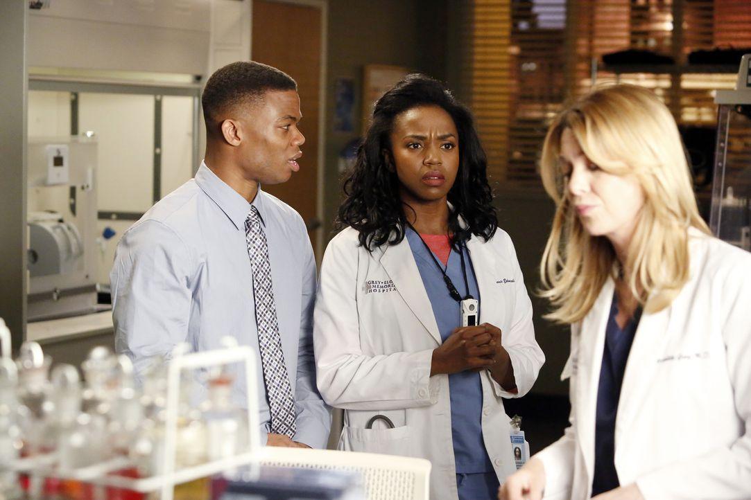 Meredith (Ellen Pompeo, r.) hat den jungen Bio-Ingenieur Eric (Paul James, l.) als Assistenten für die Arbeit mit dem 3D-Drucker eingestellt, doch s... - Bildquelle: ABC Studios