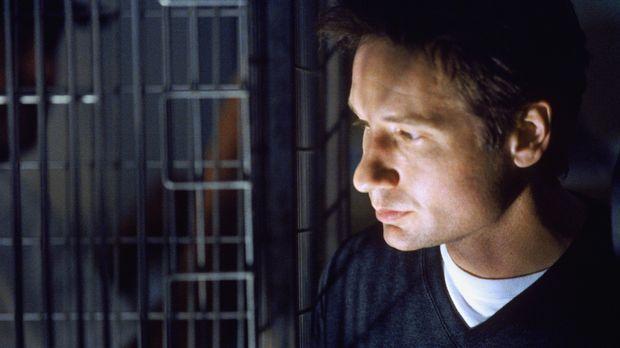 Wird gemeinsam mit seiner Kollegin auf einen neuen Fall angesetzt: Mulder (Da...
