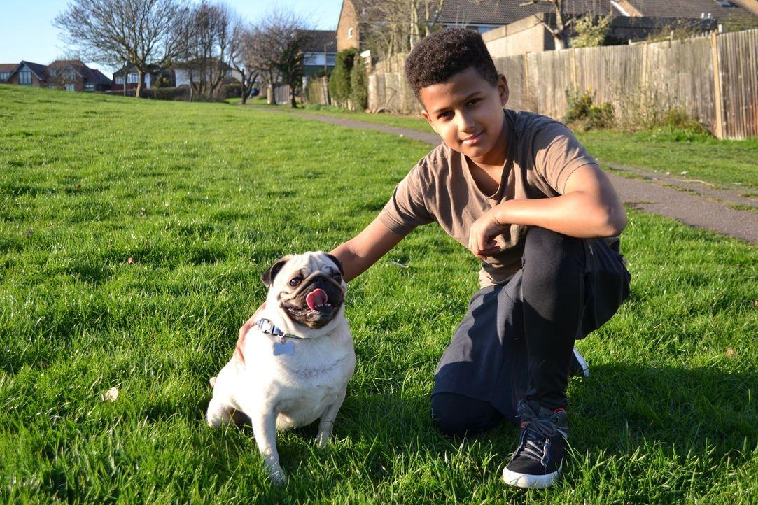 Tierärztin Cheryl ist eine wahre Hundeliebhaberin. Heute kümmert sie sich um... - Bildquelle: True North