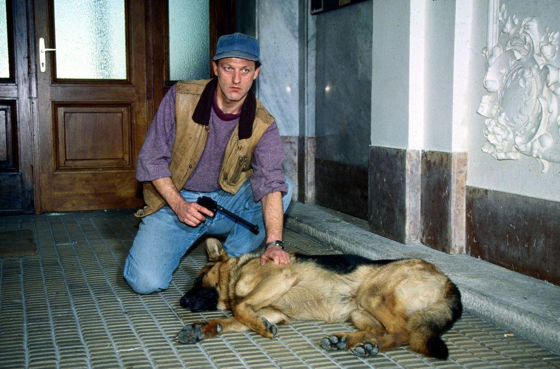 Matzner will sich an Kommissar Moser rächen und lässt durch Prantz (Leonard Lansink) Rex entführen. Falls Moser seine Anklage gegen Matzner nicht fa... - Bildquelle: Ali Schafler Sat.1