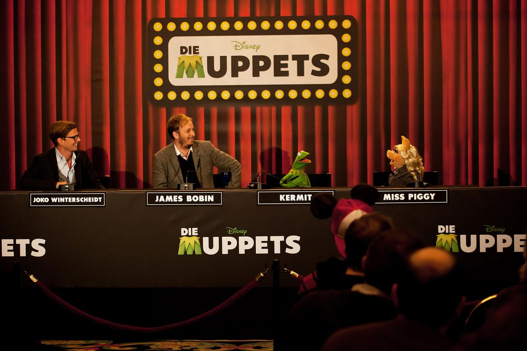 muppets-pressekonferenz-berlin-07-hanna-boussouar-walt-disney-companyjpg 1900 x 1267 - Bildquelle: Hanna Boussouar/Walt Disney Company