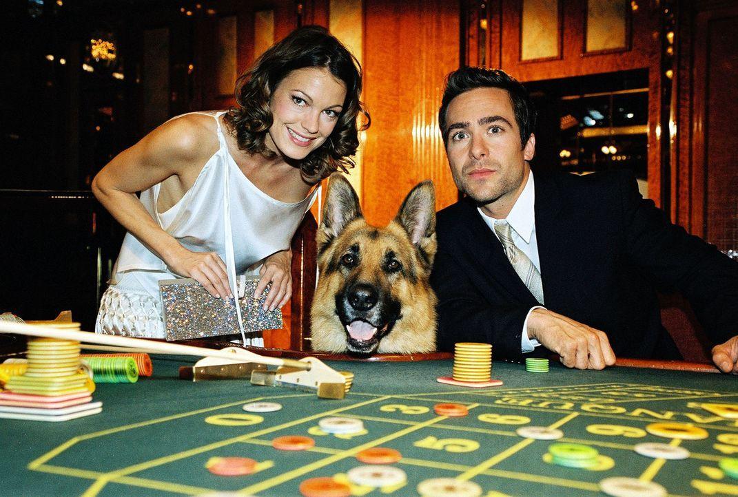 Niki (Elke Winkens, l.), Rex und Marc (Alexander Pschill, r.) versuchen ihr Glück im Casino. - Bildquelle: Ali Schafler Sat.1
