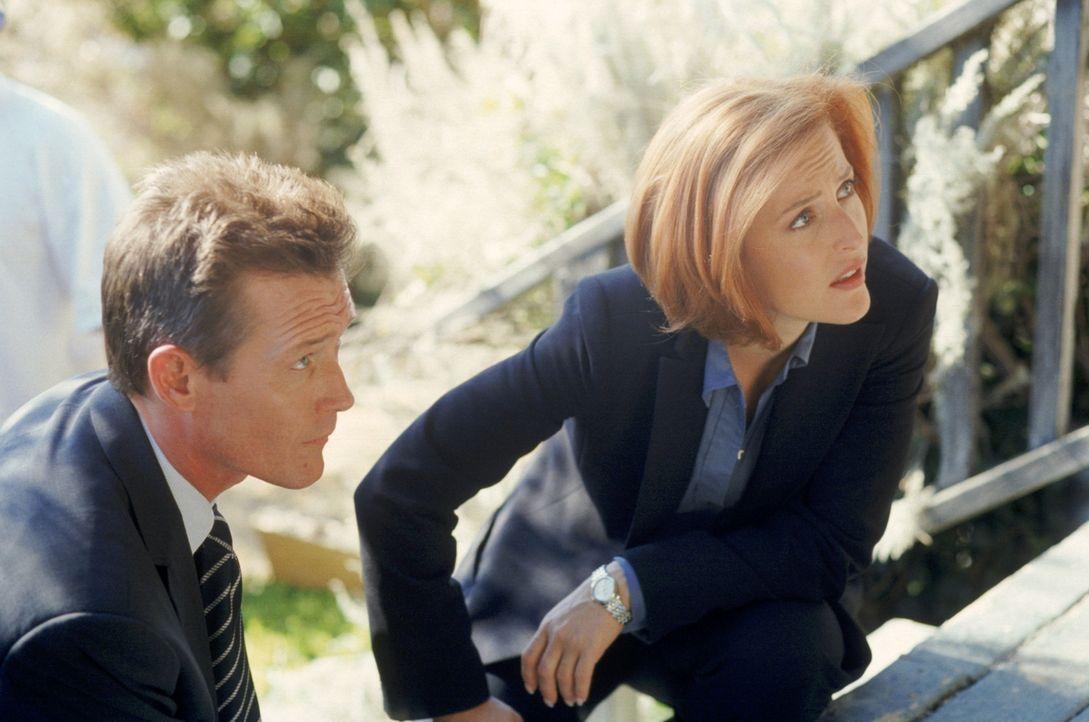 Doggett (Robert Patrick, l.) und Scully (Gillian Anderson, r.) haben es bei der Mordserie in Idaho mit einem Täter zu tun, der halb Mensch, halb Fle... - Bildquelle: TM +   2000 Twentieth Century Fox Film Corporation. All Rights Reserved.