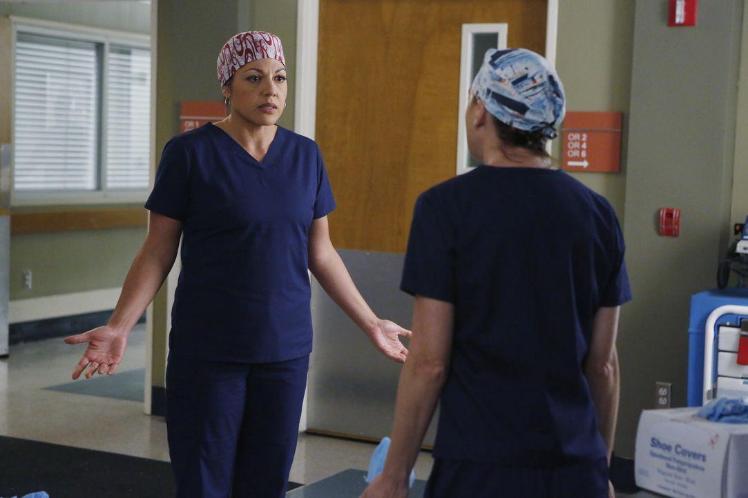 Meredith (Ellen Pompeo, r.) und Callie (Sara Ramirez, l.) geraten wegen Penny aneinander, während Webber zum neunen Wingman von Arizona wird ... - Bildquelle: Vivian Zink ABC Studios