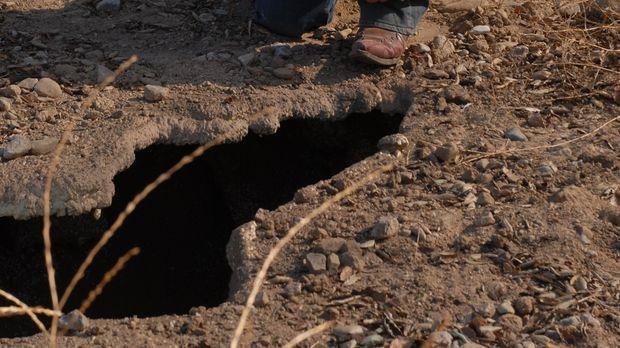 Mitten in der Wüste von Arizona vermutet Allison (Patricia Arquette) die Über...