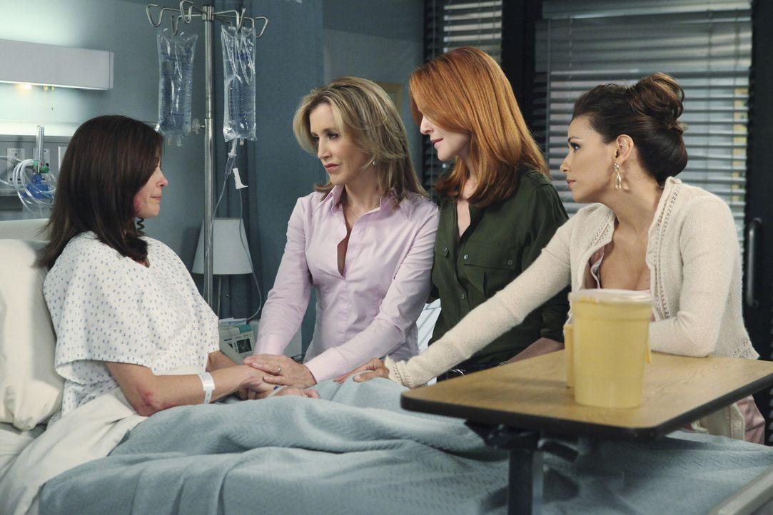 Gabrielle (Eva Longoria, r.), Bree (Marcia Cross, 2.v.r.) und Lynette (Felicity Huffman, 2.v.l.) machen sich Sorgen um Susan (Teri Hatcher, l.), die... - Bildquelle: ABC Studios