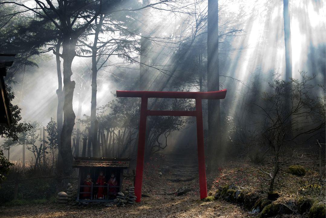Die junge Amerikanerin Aubrey reist nach Tokio, um ihre Schwester Karen nach Hause zu holen, die mit schweren Verbrennungen im Krankenhaus liegt. Do... - Bildquelle: Ghost House Pictures