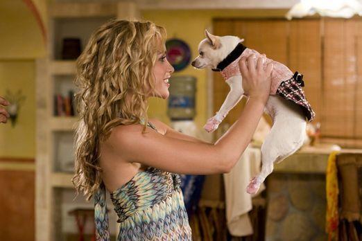 Beverly Hills Chihuahua - Die verwöhnte Chihuahua-Hündin Chloe (r.) geht währ...