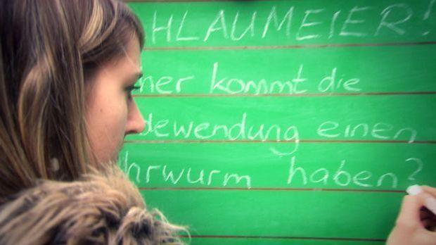 Schlaumeier - Ohrwurm