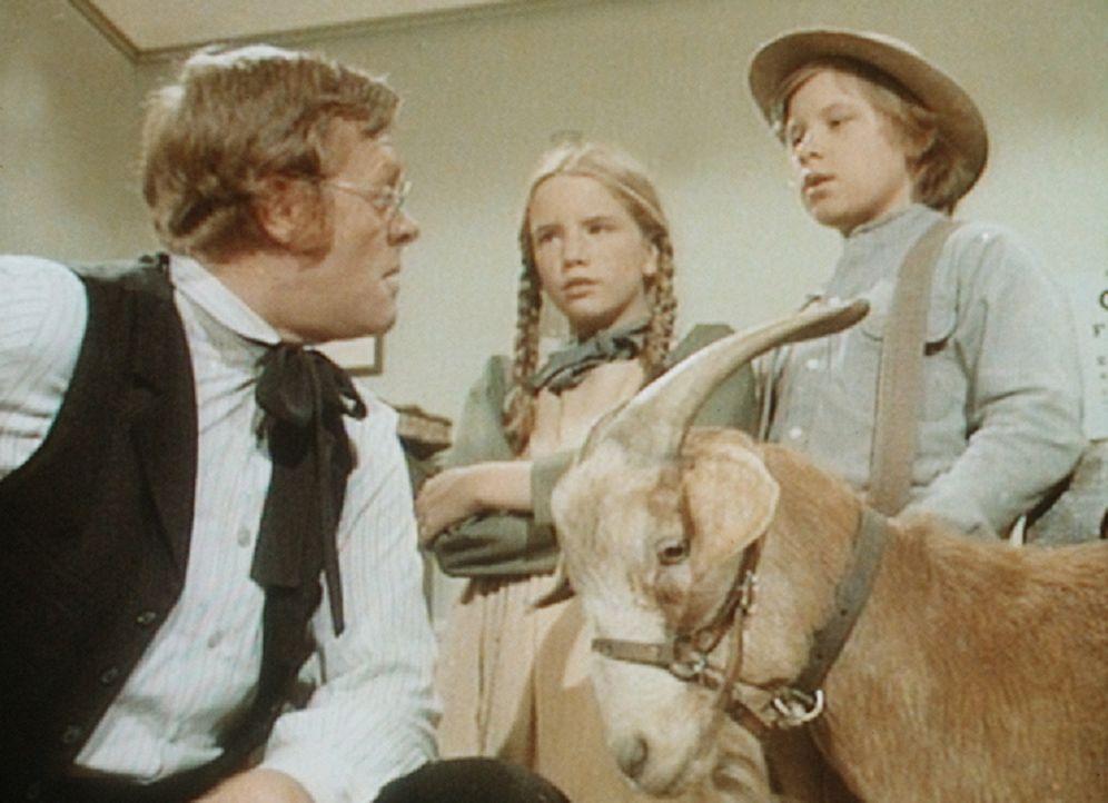 Laura (Melissa Gilbert, M.) und Carl (Brian Part, r.) können es kaum glauben, aber Dr. Baker (Kevin Hagen, l.) ist sich sicher: Der Ziegenbock ist... - Bildquelle: Worldvision