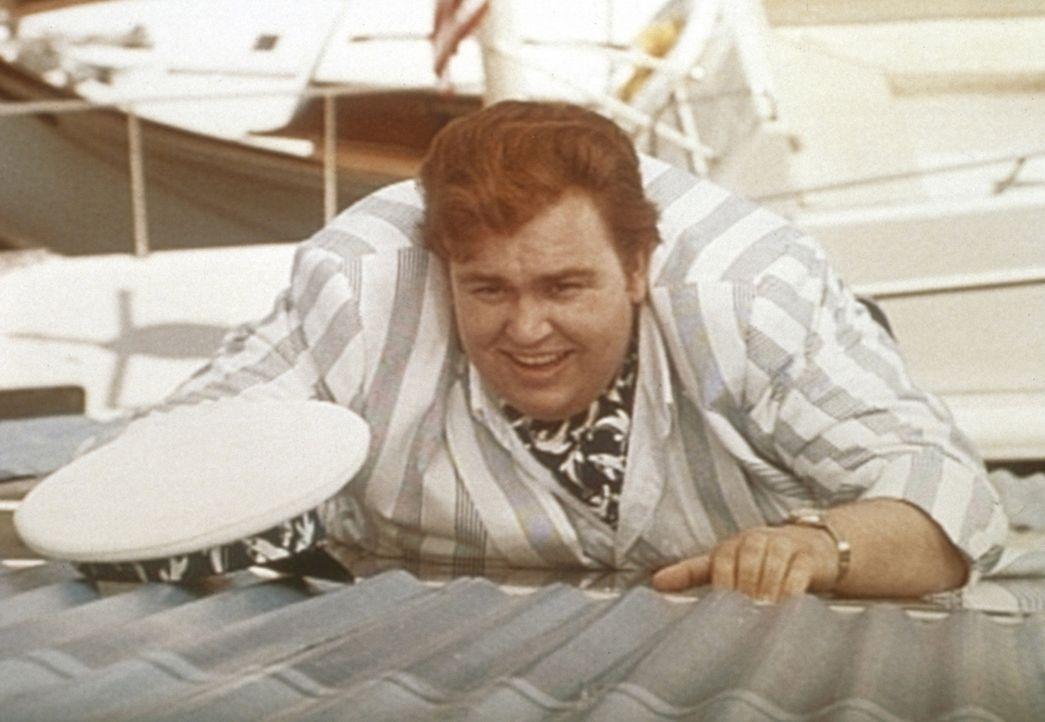 Privatdetektiv Harry Crumb (John Candy) schlittert von einer haarsträubenden Situation in die nächste ...
