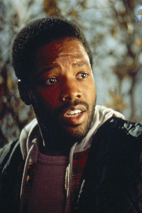 Seit einiger Zeit sucht der Vampir-Gehilfe Julius (Kadeem Hardison) verzweifelt nach einer Frau für Max, die ihm den notwendigen Stammhalter gebärt.... - Bildquelle: Paramount Pictures