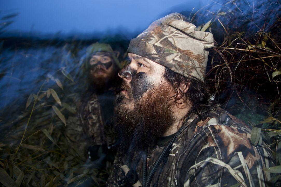 Jase (Jase Robertson, l.) und Willie (Willie Robertson, r.) haben sich mit Haut und Haaren ihrem liebsten Hobby verschrieben und die Entenjagd zu ih... - Bildquelle: Zach Dilgard 2012 A+E Networks