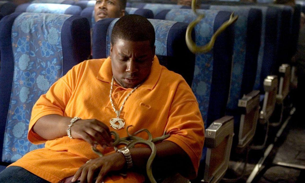 Alles Gute kommt von oben - nicht an Bord der Passagiermaschine von Hawaii nach L.A., wo Troy (Kenan Thompson) mit Entsetzen die Schlangen bemerkt,... - Bildquelle: Warner Brothers