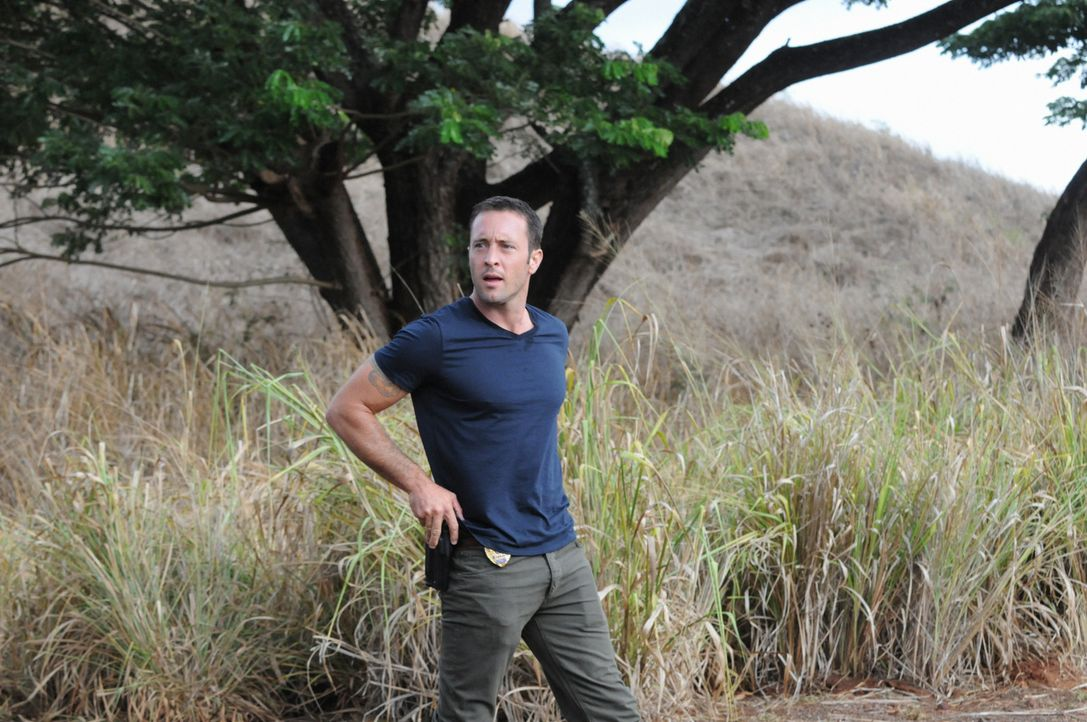 Ein neuer Fall wartet auf Steve (Alex O'Loughlin) ... - Bildquelle: 2013 CBS BROADCASTING INC. All Rights Reserved.
