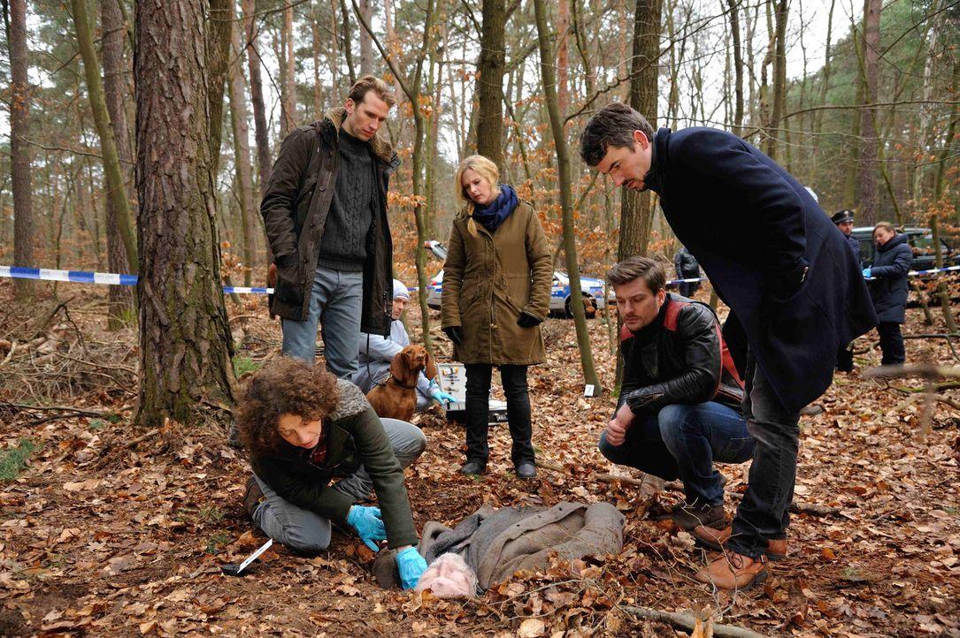 Gustav Sobek (Tillbert Strahl, 2.v.l.) entdeckt im Wald einen toten Obdachlosen. Josephine (Diana Amft, M.), Fritz (Matthi Faust, 2.v.r.), Alexander... - Bildquelle: Hardy Spitz SAT.1