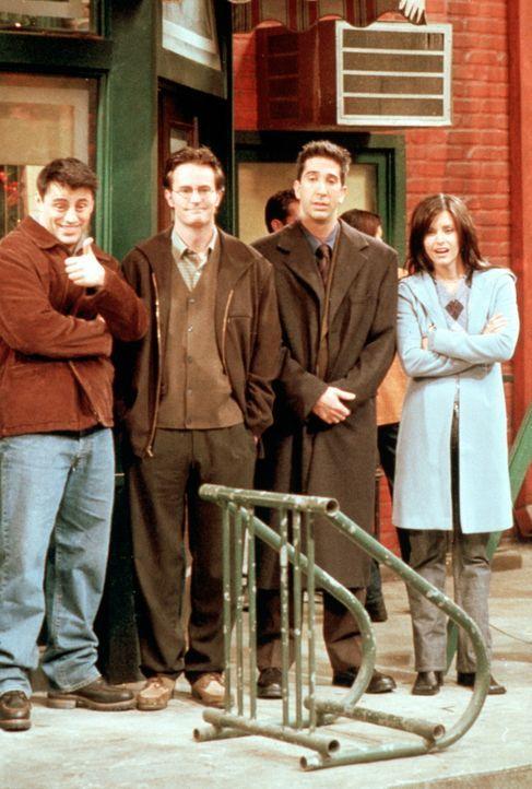 (v.l.n.r.) Joey (Matt LeBlanc), Chandler (Matthew Perry), Ross (David Schwimmer) und Monica (Courteney Cox) beobachten Phoebes erste Versuche auf de... - Bildquelle: TM+  2000 WARNER BROS.