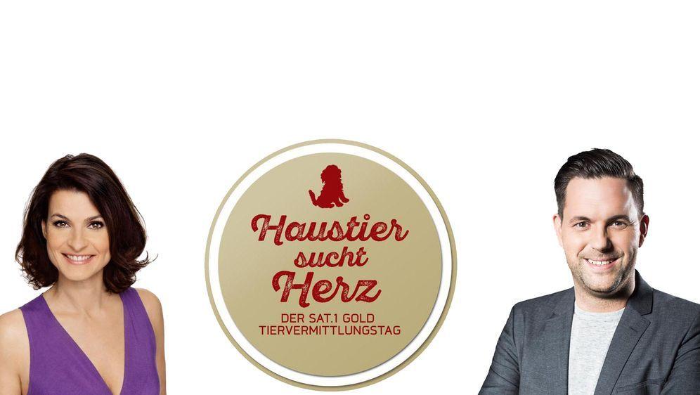 Haustier sucht Herz - Der SAT.1 Gold Tiervermittlungstag - Bildquelle: 09.10.2016 •  14:30 Uhr