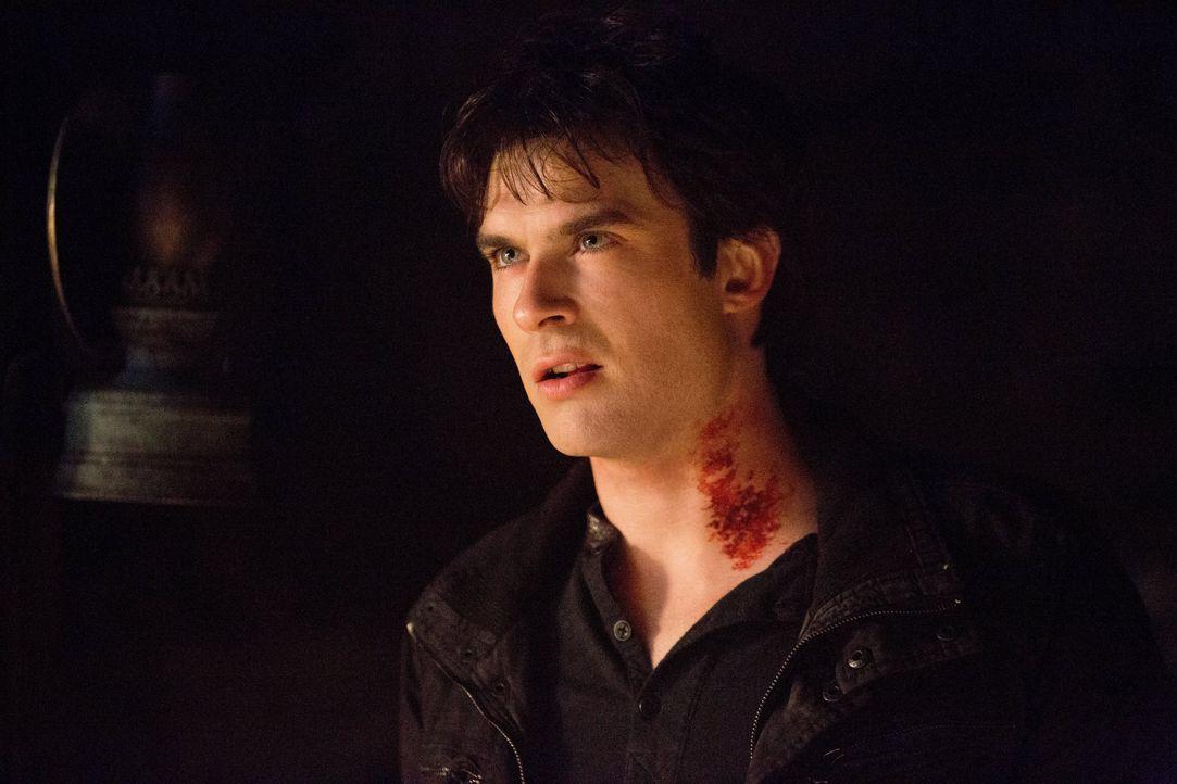Damon Salvatore - Bildquelle: Warner Bros. Entertainment Inc.