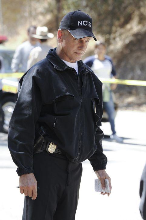 Gemeinsam mit seinem Team, ermittelt Gibbs (Mark Harmon) in einem neuen Mordfall ... - Bildquelle: CBS Television