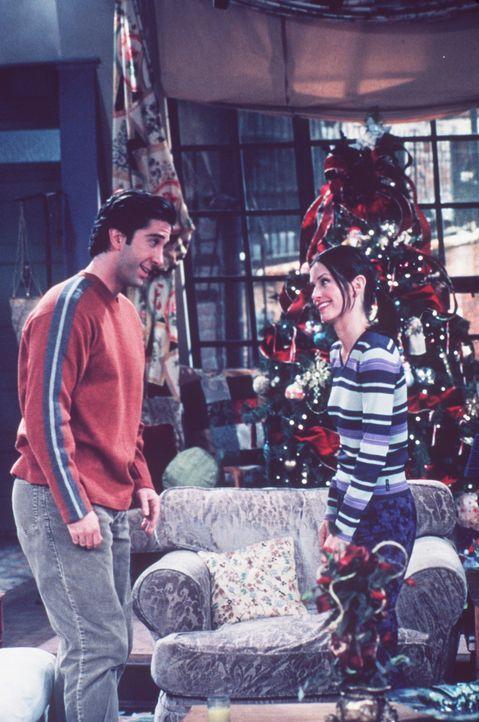 Monica (Courteney Cox, r.) macht sich Sorgen um ihren Bruder Ross (David Schwimmer, l.). - Bildquelle: TM+  2000 WARNER BROS.