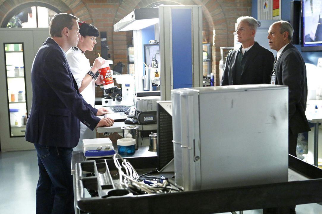 Gibbs (Mark Harmon, 2.v.r.),  Abby (Pauley Perrette, 2.v.l.) und McGee (Sean Murray, l.) schließen sich mit FBI-Agent Fornell (Joe Spano, r.) zusam... - Bildquelle: CBS Television