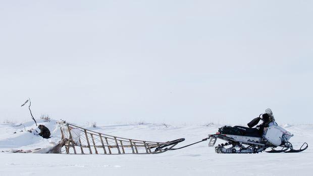 Auf die Bewohner Alaskas kommen einige Probleme zu, als sich ein Raubtier bre...