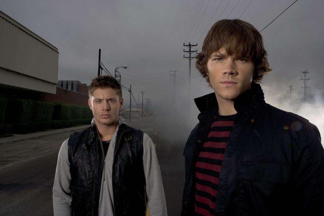 (2. Staffel) - Die Jagd nach dem Bösen geht in die nächste Runde: Sam (Jared Padalecki, r.) und Dean Winchester (Jensen Ackles, l.) ... - Bildquelle: Warner Bros. Television