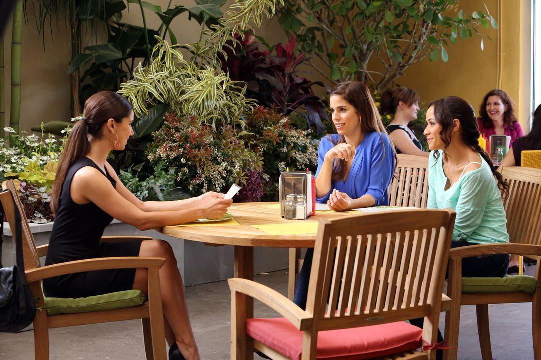 Haben mit so manchen Problemen zu kämpfen: Marisol (Ana Ortiz, M.), Rosie (Dania Ramirez, r.), Carmen (Roselyn Sanchez, l.) und Zoila ... - Bildquelle: ABC Studios