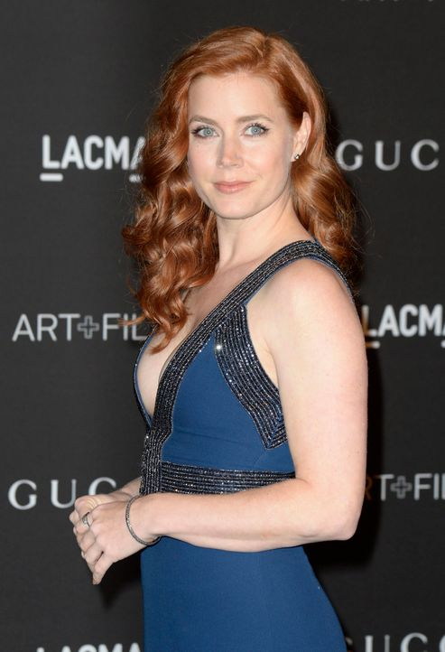 Amy-Adams-Comedy-Musical-14-11-01-dpa - Bildquelle: dpa