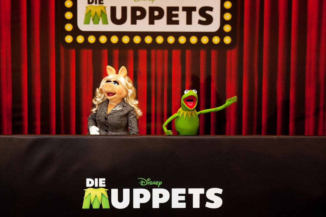 muppets-fotocall-berlin-03-hanna-boussouar-walt-disney-companyjpg 1900 x 1267 - Bildquelle: Hanna Boussouar/Walt Disney Company