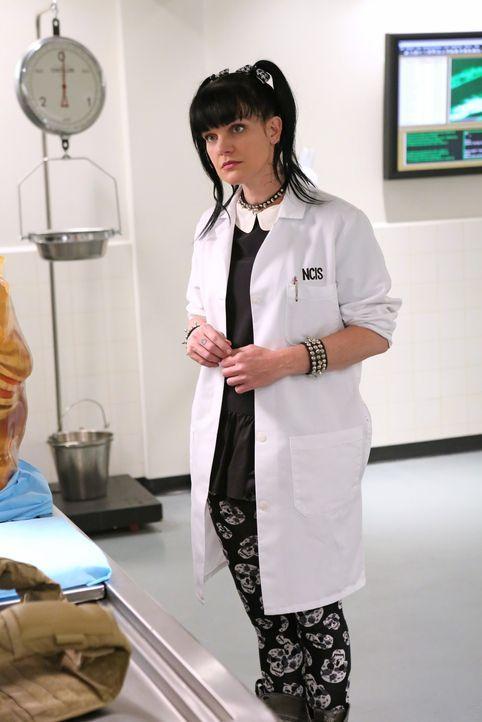"""Wer hat die tödlichen """"Schutz""""westen entwickelt? Abby Sciuto (Pauley Perrette) versucht, der Funktion der Todesfallen auf die Spur zu kommen ... - Bildquelle: CBS Television"""