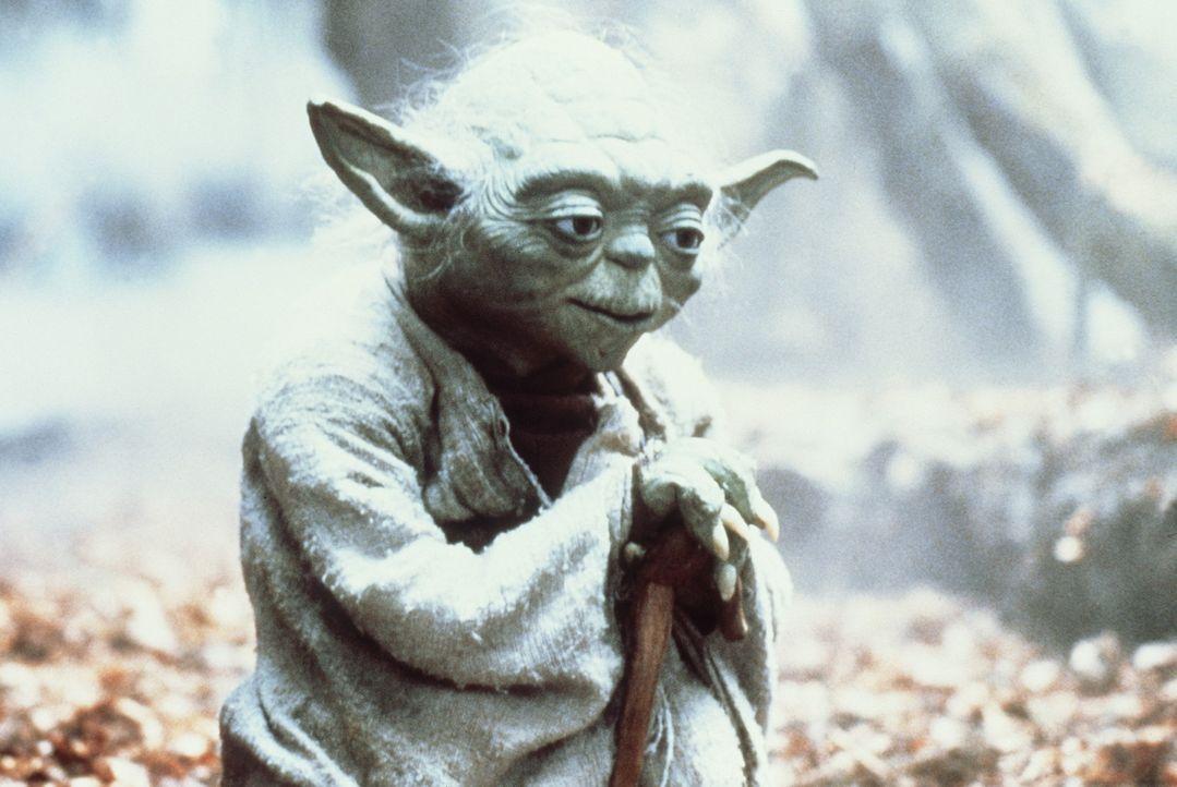 Als wahrer Jedi- Ritter führt Yoda (Frank Oz) ein tugendsames Leben ohne Fehl und Makel ... - Bildquelle: Lucasfilm LTD. & TM. All Rights Reserved.