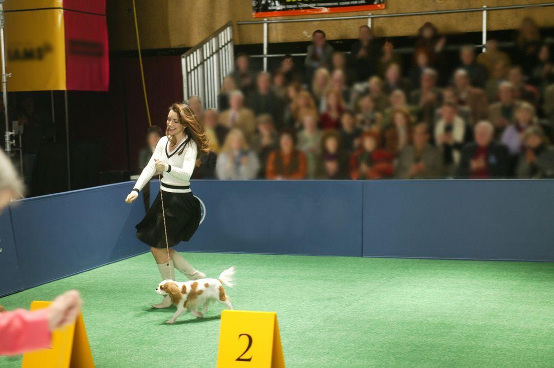 """Als Charlotte (Kristin Davis) mit ihrem neuen Familienmitglied """"Elizabeth Taylor"""" an einer Hundschau teilnimmt, ist sie sogleich überzeugt, als Sie... - Bildquelle: Paramount Pictures"""