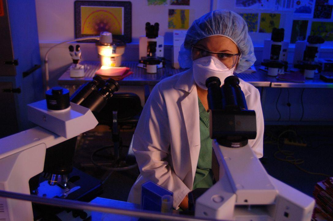 Im Wettlauf mit der Zeit: die Epidemiologen Kayla Martins (Tiffani Thiessen) ... - Bildquelle: 2006 RHI Entertainment Distribution, LLC