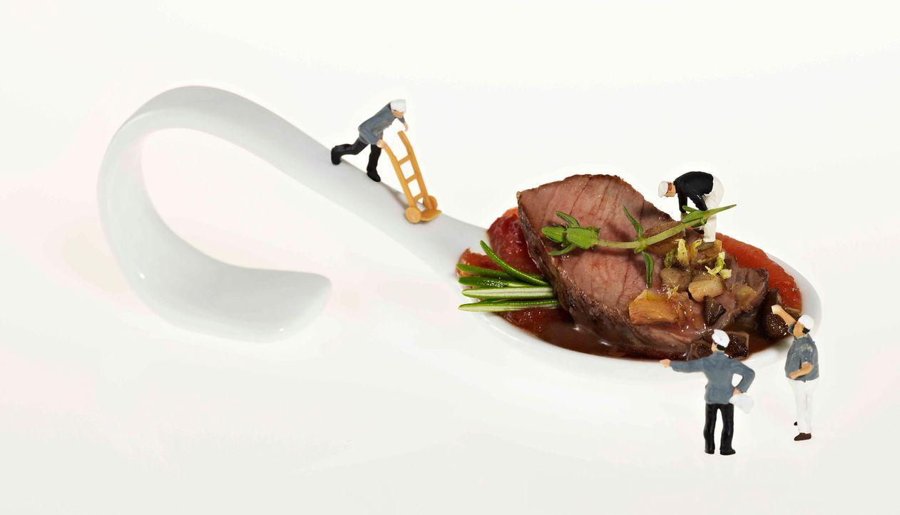 The_Taste_Stf02_Sat_1_14 - Bildquelle: SAT.1