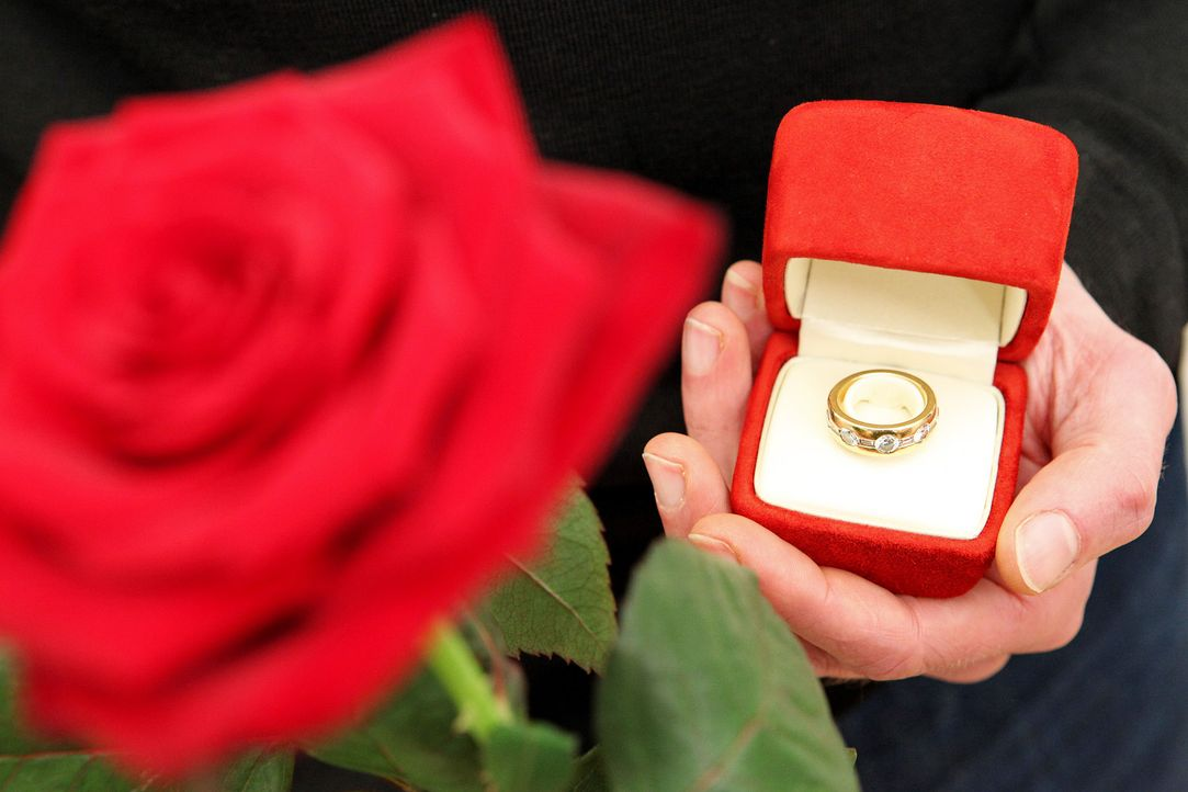 Heiratsantrag-Ring-1-dpa - Bildquelle: dpa