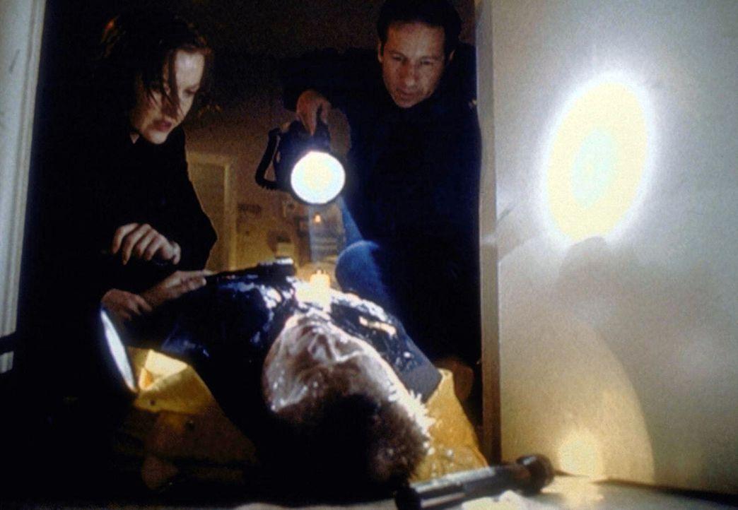 Scully (Gillian Anderson, l.) und Mulder (David Duchovny, r.) versuchen, Deputy Greer (Joel McKinnon Miller, M.) zu retten, der von einem Meeresunge... - Bildquelle: TM +   2000 Twentieth Century Fox Film Corporation. All Rights Reserved.