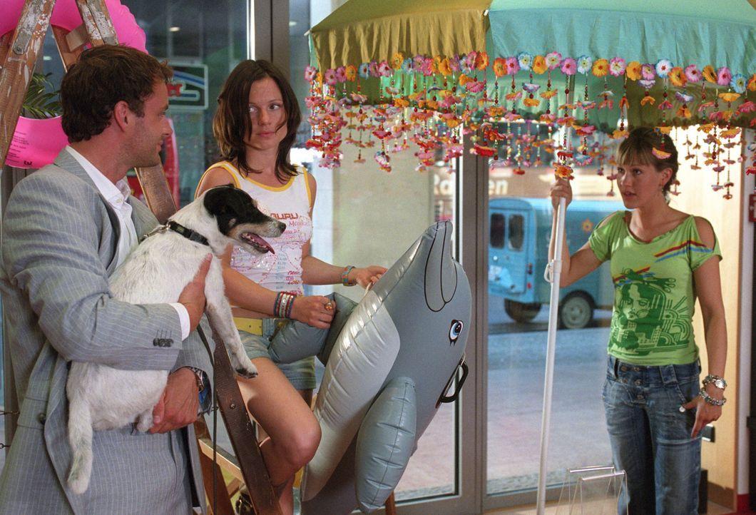 Daniel (André Röhner, l.) taucht zur Überraschung von Isabelle (Wolke Hegenbarth, r.) und ihrer Freundin Suse (Daniela Preuß, M.) in der Buchhan... - Bildquelle: Sat.1