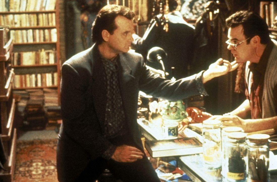 Für den lebenslustigen Peter Venkman (Bill Murray, l.) ist Raymonds (Dan Aykroyd, r.) Ernsthaftigkeit nicht immer nachzuvollziehen. Er geht die Jag... - Bildquelle: 1989 Columbia Pictures Industries, Inc. All Rights Reserved.