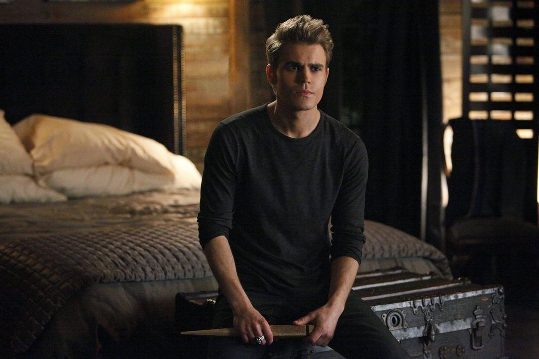 Arbeitet gemeinsam mit Damon an dem Projekt, Klaus zu zerstören: Stefan (Paul Wesley) ... - Bildquelle: Warner Brothers Entertainment Inc.