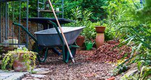 mulchen so profitieren rasen beet und boden sat 1 ratgeber. Black Bedroom Furniture Sets. Home Design Ideas