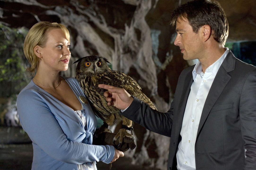 An einem romantischen Sommerabend im Zoo kommen sich Sonja (Floriane Daniel, l.) und Mark (Jan Sosniok, r.) näher ... - Bildquelle: Thomas Kost Sat.1