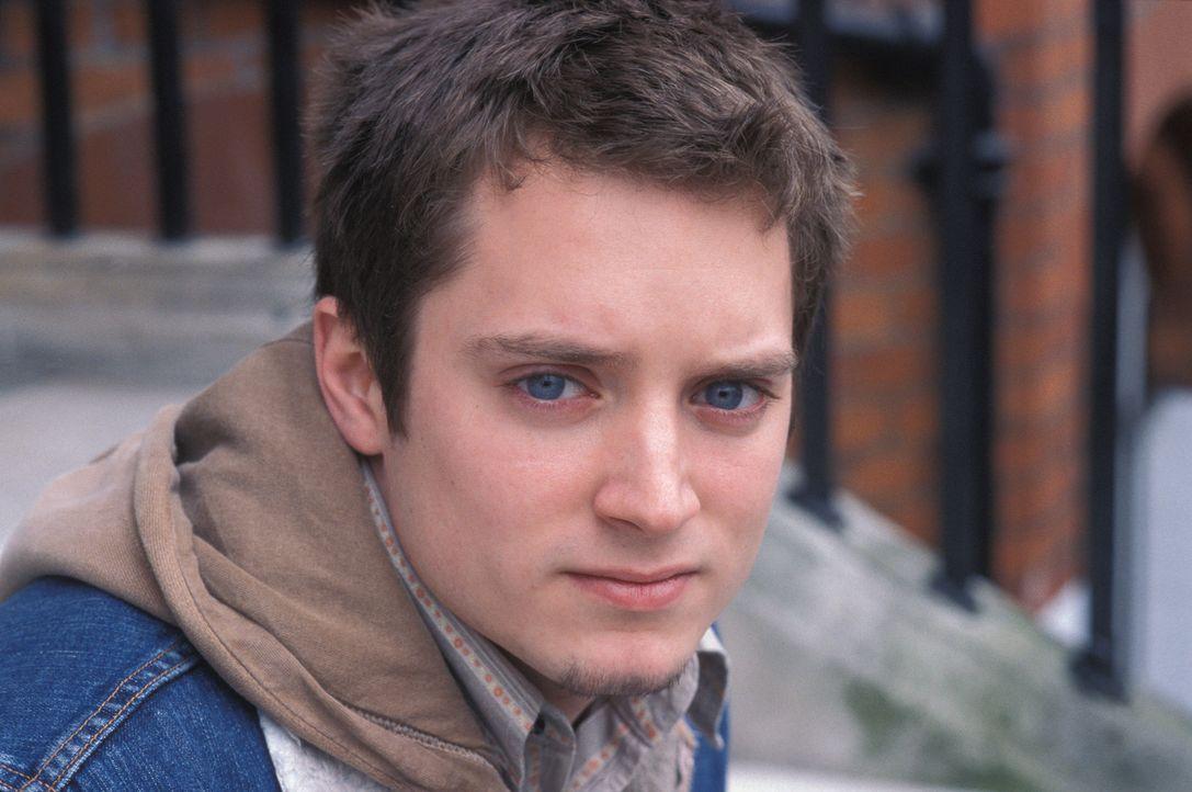 Eines Tages rutscht der eher sensible Matt (Elljah Wood) in die Untergrund-Fanorganisation des Westham United FC, in eine Welt, die von Brutalität u... - Bildquelle: Odd Lot Entertainment