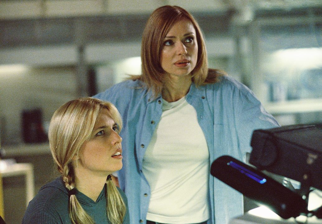 Hoffen auf Hilfe: Vera (Elise Muller, l.) und Linda (Vanessa Angel, r.) ... - Bildquelle: 2004 Sharky Productions A.V.V.  All Rights Reserved.