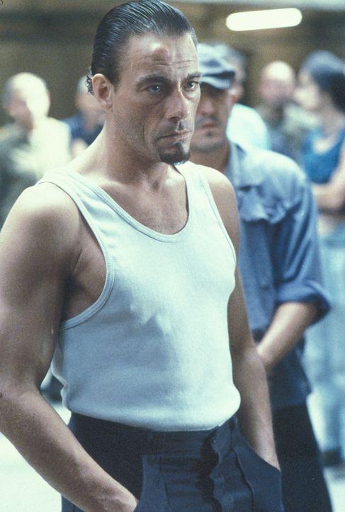 Nach der Ermordung des Mörders seiner Frau wird der amerikanische Ingenieur Kyle LeBlanc (Jean-Claude Van Damme, 4.v.r.) verurteilt und landet in d... - Bildquelle: NU IMAGE