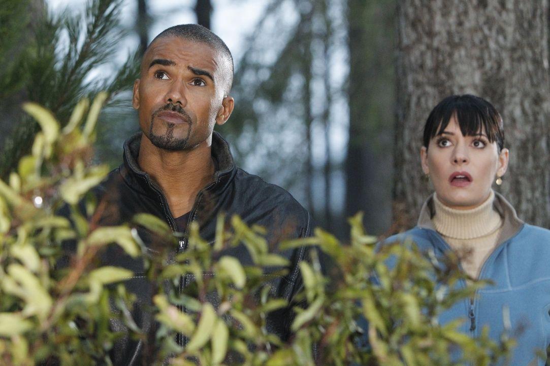 Müssen einen neuen Fall aufdecken: Prentiss (Paget Brewster, r.) und Morgan (Shemar Moore, l.) ... - Bildquelle: ABC Studios