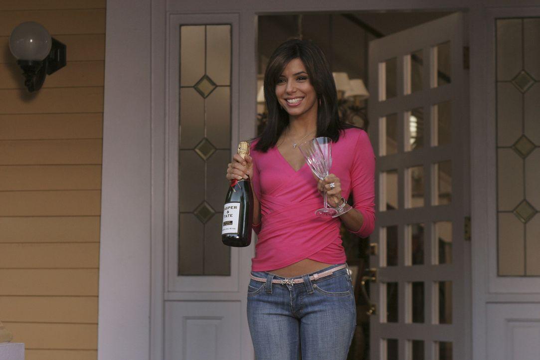 Da Carlos unter Hausarrest steht, muss Gabrielle (Eva Longoria) weiterhin arbeiten, denn die Banknoten liegen immer noch auf Eis ... - Bildquelle: Touchstone Television
