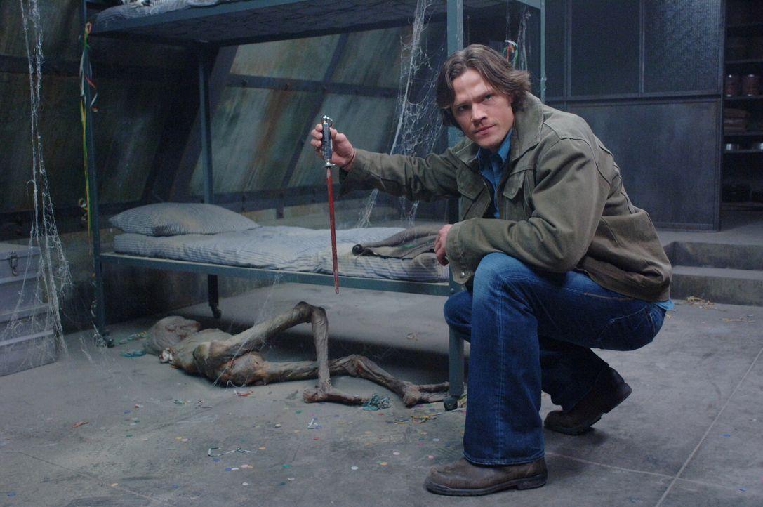 """Sam (Jared Padalecki) und Dean nehmen sich eine Auszeit, um in der Reality Show """"Ghostfacers"""" mitzuspielen, die den Kampf mit dem Paranormalen besch... - Bildquelle: Warner Bros. Television"""
